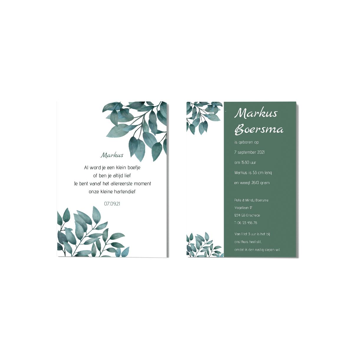 Klassiek geboortekaartje jongetje groene bladeren voor en achter