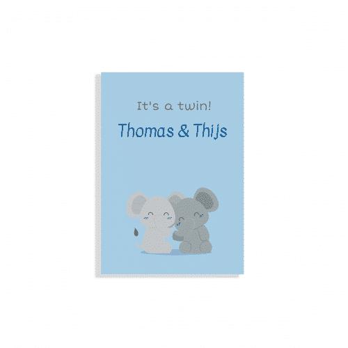 Hip geboortekaartje tweeling met olifantjes voorzijde