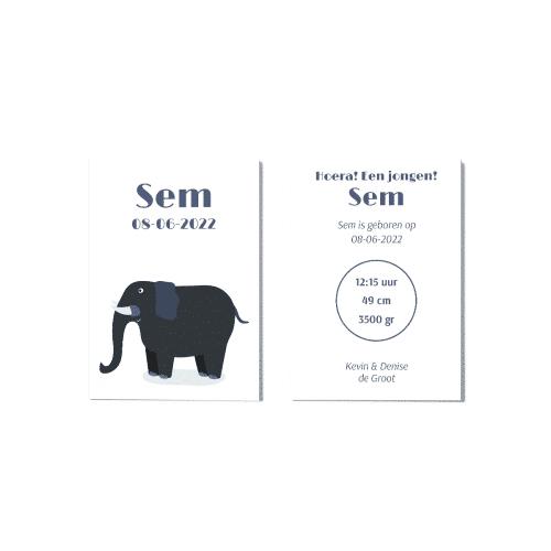 Hip geboortekaartje jongen met olifant voor en achter