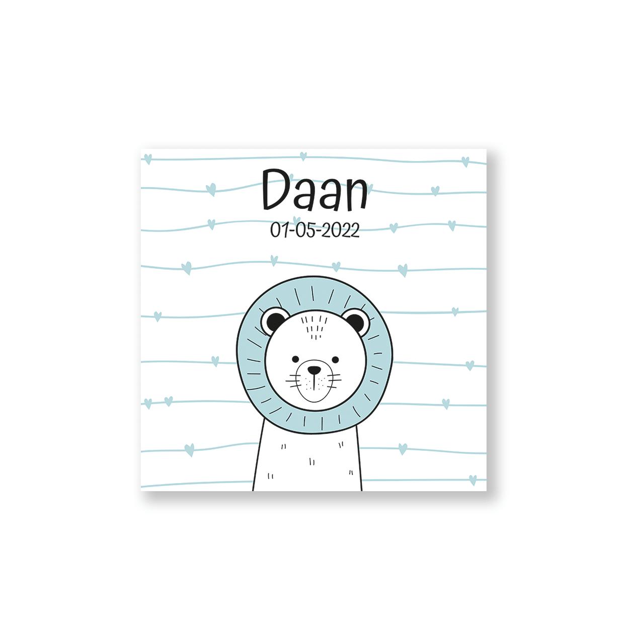 geboortekaartje voor een jongen met leuk leeuwtje voorzijde