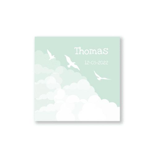 Klassiek geboortekaartje jongen wolken en vogels voorzijde