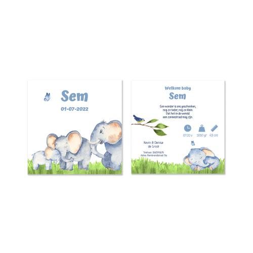 Geboortekaartje met olifant gezinnetje voor en achter