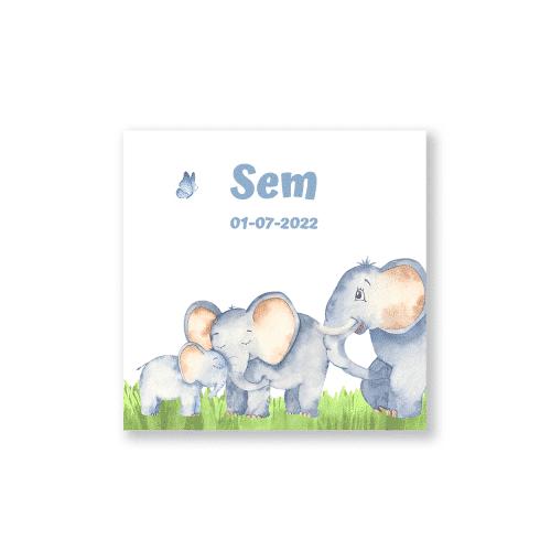 Geboortekaartje met olifant gezinnetje voorzijde