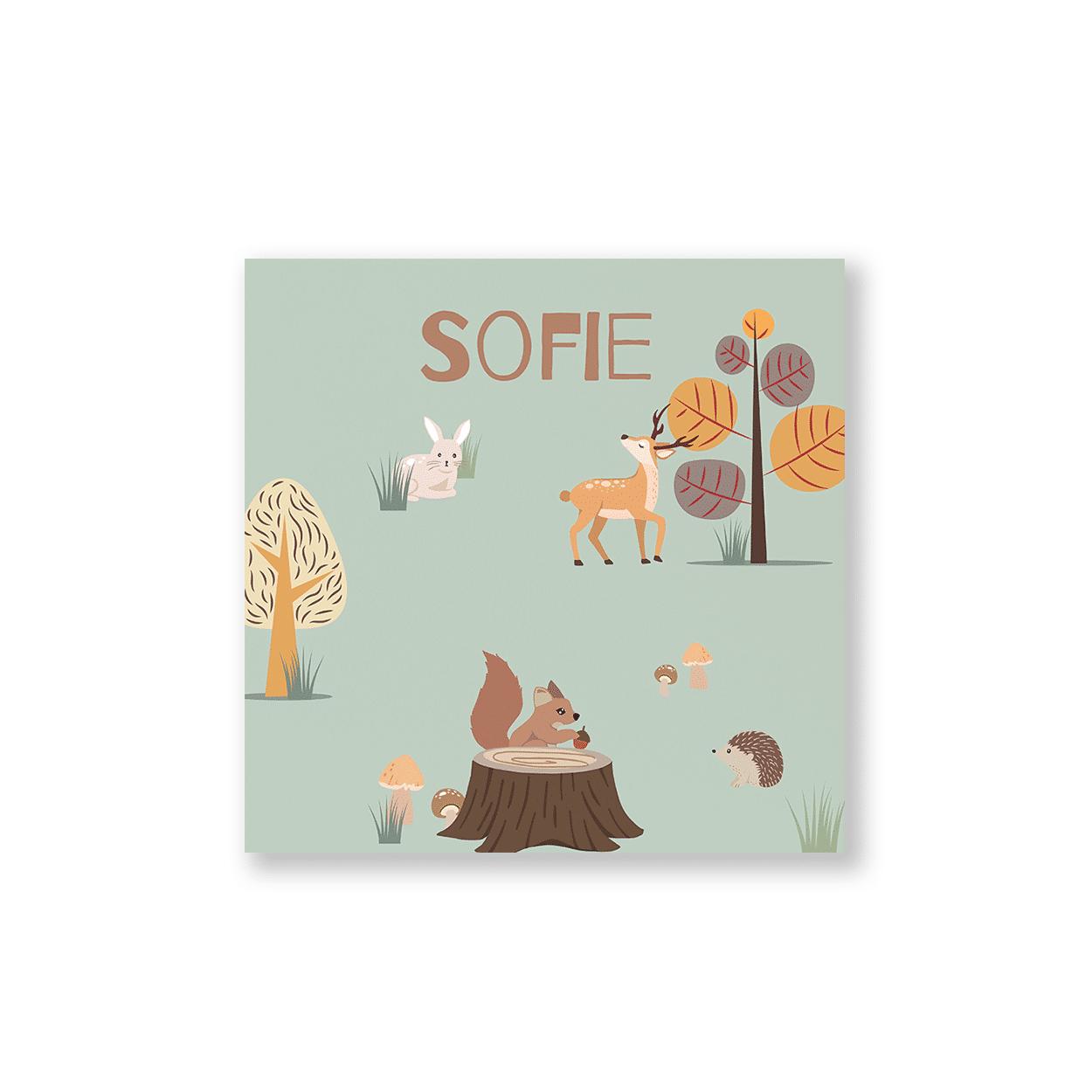 Geboortekaartje met bos thema voorzijde