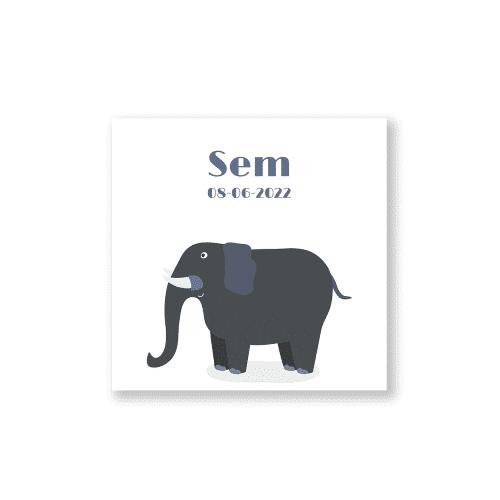 Hip geboortekaartje jongen met olifant voorzijde