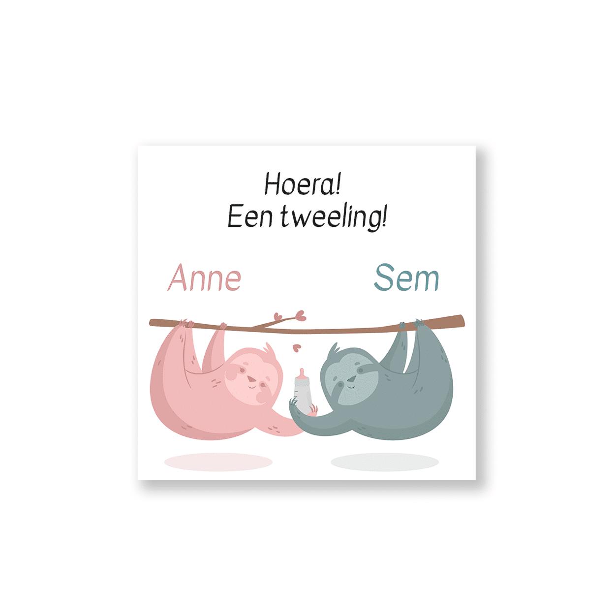 Hip tweeling geboortekaartje met luiaarden voorzijde