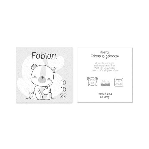 Geboortekaartje jongen met teddy beertje voor en achter