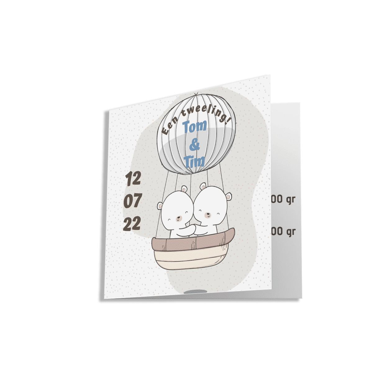 Geboortekaartje voor een tweeling met twee beertjes in een luchtballon.