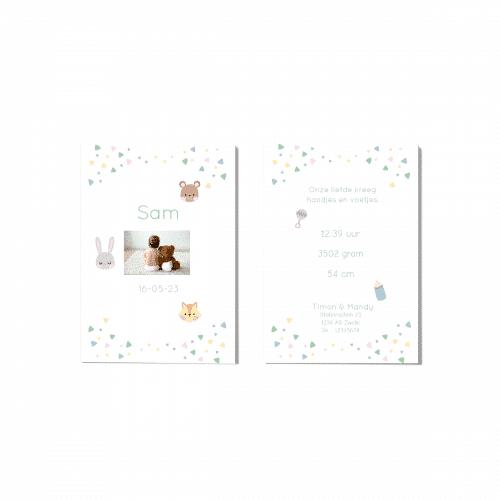 Minimalistisch geboortekaartje dieren en versieringen voor en achter