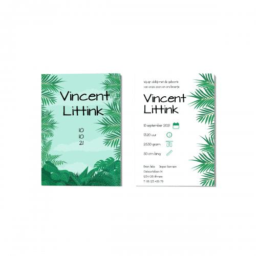 Stoer geboortekaartje jungle thema voor en achter