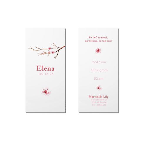 Geboortekaartje roze bloesemtak voor en achter