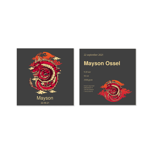 Stoer geboortekaartje met draak voor en achter